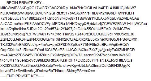 """Beispiel für einen """"Privaten Schlüssel2"""
