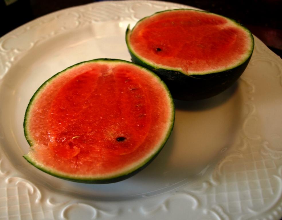 Wassermelone auf Balkon