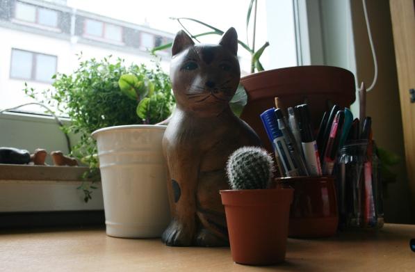 Katze_mit_Kaktus
