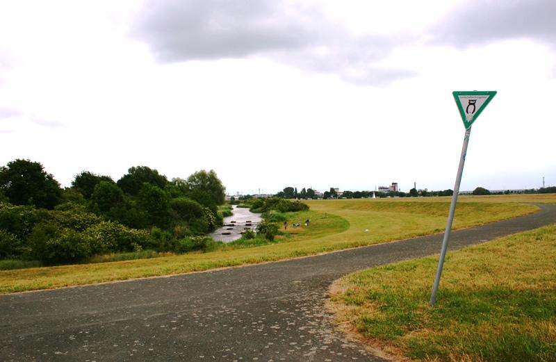 Weser_Deich_Fahrradtour