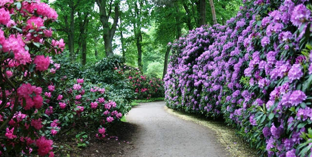 Park_Botanika_Bremen_Weg